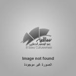 Diaa Khairallah